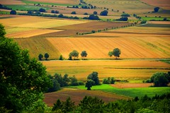 summer moods (JoannaRB2009) Tags: summer mood field fields landscape view nature hills trees green yellow light shadow hesse hessen germany deutschland