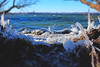 340/365 (local paparazzi (isthmusportrait.com)) Tags: 365project fujix100s fujifilmusa fujifilm fujifilmx100s lopaps pod 2017 redskyrocketman localpaparazzi isthmusportrait madisonwi danecountywisconsin ice cold chilly frozen icy snow lake mendota lakemendota iceformation sharp detail miniature mini tiltshift mirrorless leaf leafshutter perspective blue catchycolorsblue stillfall waitingforwinter fuji landscape winterlandscape frozenlandscape iso400