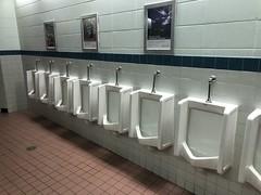 Rexall place Edmonton (jasonwoodhead23) Tags: plumbing canada alberta urinals edmonton fixtures sanitary rexallplace