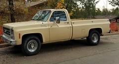 Chevrolet Scottsdale 20 (Caleb O.) Tags: chevrolet scottsdale