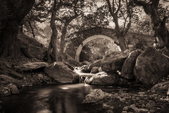 arched stone bridge.. (ckollias) Tags: blackwhite arch archedbridge beautyinnature blackandwhite blackandwhitephotography bridge bridgemanmadestructure day forest forestphotography nature nopeople outdoors river rockobject scenics tranquilscene tranquility tree water waterfront