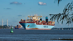 BerufundFreizeit (lotharmeyer) Tags: elbe container segeln tiere lotharmeyer nikon freizeit maerskline