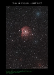 Testa di Scimmia - NGC 2174 (AstroBetta) Tags: astrobetta ngc2174 orione staradventurer tecnosky70420ed testadiscimmia