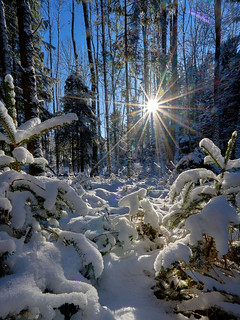 Winter Wonderland - I wish you all a Happy New Year, my Dear Friends!!!