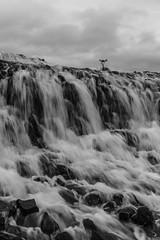 Waterval - Waterfall (naturum) Tags: 2017 angelica angelicaarchangelica blackandwhite blackwhite bruararfoss brúarárfoss bruarfoss brúarfoss bw engelwortel geo:lat=6426428588 geo:lon=2051584929 geotagged groteengelwortel herfst iceland ijsland ísland september waterfall waterval zw zwartwit laugarvatni isl