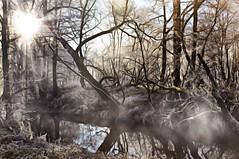 Komm mit ins Land der Fantasie (Uli He - Fotofee) Tags: ulrike ulrikehe uli ulihe ulrikehergert hergert nikon nikond90 fotofee haune nebel eisig schnee kälte sonne licht morgens morgenlicht bäume
