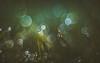 Dew drops (Dhina A) Tags: sony a7rii ilce7rm2 a7r2 smc pentax m 50mm f17 pentaxm50mmf17 bokeh manual kmount legend