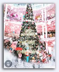 Have yourself a merry little Christmas! (FotographyKS!) Tags: christmas merrychristmas christmastree holidays happyholidays christmastime christmaslove xmas merryxmas winter xmastree santa santaclaus xmasspirit jinglebells whatawonderfulyear mostwonderfultimeoftheyear thankful blessed lookingforward alliwantforchristmasisyou shutterfly hapiness familygifts love timeofmylife happynewyear hohoho amigos snow bright decor lights gifts christmasscene christmasstar festive glowing pinetree seasonal background snowcovered december garland celebrate celebration sparkling event star texture perspective snowfall iterior traditional indoors fantasy kreative art sundaylights