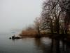 Nebel am See (torremundo) Tags: männedorf zürichsee nebel winter stimmung wasser ufer