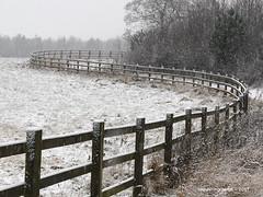 Snowy & Curvy Winter Fence - Stannington Northumberland England (WanderingPJB) Tags: england northumberland stannington fence snow curvy winter smileonsaturday fancyfence