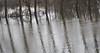 Hoogwater 2018 4 (megegj)) Tags: gert refelection flood
