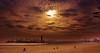 Winter Skies (beachpeepsrus) Tags: beach beachfront terns tide water westcoast longbeachcalifornia longbeachgranprix light