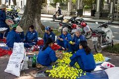 Výroba oslavných květinových tabulí (zcesty) Tags: vietnam16 ulice květiny domorodci vietnam hanoj dosvěta hanoi hànội vn