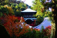 Daisho-in (AIexandra) Tags: japan miyajima autumn temple nature sony 6000 daishoin