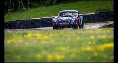 AC Cobra 289 (1963) (Laurent DUCHENE) Tags: peterauto dijonprenois 2017 sixtiesendurance motorsport car grandprixdelagedor shelby ac cobra 289 americancar