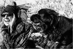 Valentina (andaradagio) Tags: andaradagio bianconero bw canon dog cane miglioramicodelluomo nadiadagaro rifugioohana bandaa4zampeumbria