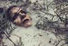 Marsh II (n4i.es) Tags: girl model marsh drowning branches n4iphoto n4ies redlips pain swimmingpool milk photoshoot cristinago angelesaragonbarrocristinagoestudiofantasiahighkeylechemorenapiscinaramassemidesnudossesiónángelesjerezdelafronteracádizspain