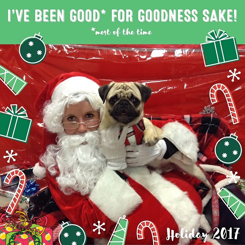 Petsmart Christmas Hours.The World S Best Photos Of Petsmart And Santa Flickr Hive Mind
