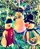 The Three Snowmen (mo-barton.pixels.com) Tags: christmas christmastree card greeting snowmen ornament tree fun