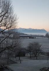 Dezembermorgen (Cornelia1989) Tags: bunt dezember nebel himmel königsdorf berge weihnachten bayern alpen sonnenaufgang canon 70d tamron oberbayern ausblick bauernhof fog gras natur nature landschaft landscape