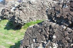 IMG_3658 (avsfan1321) Tags: ireland northernireland countyantrim unitedkingdom uk giantscauseway causewaycoast wildatlanticway basalt rock stone blackbasalt column columnarjointing columnarbasalt ocean atlanticocean landscape