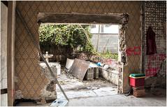 20-MIRANDO AL JARDÍN (--MARCO POLO--) Tags: obras casas arquitectura rincones curiosidades