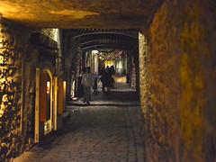 Katariina käik (Tallinn Old Town, 20171227) (RainoL) Tags: crainolampinen 2017 201712 20171227 alley d5200 december estonia geo:lat=5943759117 geo:lon=2474945068 geotagged harjumaa katariinakäik kesklinn night tallinn tallinnoldtown urban vanatallinn winter est