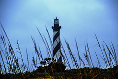 Cape Hatteras Lighthouse (Beangrau12) Tags: capehatteraslighthouse graycloudyday beach reeds landscape nikon3200