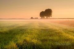 A New Year (Ellen van den Doel) Tags: zonsopkomst natuur netherlands season nature mist overflakkee nederland outdoor fall september herfst goeree summer 2017 lucht zonsopgang zomer weather sky fog sunrise landscape landschap field stellendam zuidholland nl