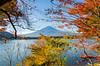Fuji from the banks of the Kawaguchiko lake (KurtRules) Tags: lake kawaguchiko banks fuji mount mountfuji japan autumn