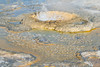 Aurum Geyser (sethjschubert) Tags: uppergeyserbasin yellowstone aurumgeyser