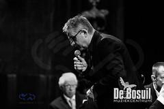 2017_01_07 Nieuwjaarsconcert St Antonius NJC_2942-Johan Horst-WEB