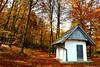 La casa otoñal (binladiya) Tags: otoño autumn eslovenia europa europe caseta forest house arboles trees bosque