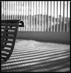 parallel shadows (ukke2011) Tags: hasselblad503cw planarcfe8028 rolleirpx25 selfdeveloping rodinal 150 film pellicola 6x6 square 120 bw mediumformat analog analogico lines linee ombre shadows blackandwhite