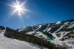 Park City, Utah (M.J. Scanlon) Tags: ski skiing slopes trail green blue black wastach mountain snow powder white cold sky sun tree mojo scanlon capture image canon digital photo photography photographer photograph picture