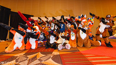 Midwest FurFest 2017 Fursuit Menagerie Station #9 (FurFest) Tags: mff2017menageriestation9 fursuitsaturday2017 midwest furfest midwestfurfest2017 fursuit