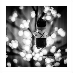 Un sacré caractère.... (Panafloma) Tags: 2017 bandw bw evènements famille nadine nadinebauduin natureetpaysages noël objetselémentsettextures personnes techniquephoto végétaux arbre blackandwhite décoration décorationnoël noiretblanc noiretblancfrance sapin france fr