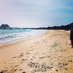 (jjay69) Tags: srilanka asia sri lanka indiansubcontinent ceylon southasia tropical island tropicalisland islandlife paradise holiday vacation trip travel yala yalanationalpark nationalpark beach coast beaches sand sandy sandybeach sea ocean water