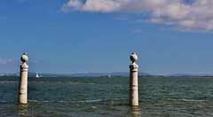 IMG_9301 (jorgeneto4) Tags: lisbon lisboa tagus tejo river colunas landscape sky blue