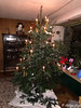 Weihnachtsbaum 2017 (Laterna Magica Bavariae) Tags: tanne weihnachtsbaum kerzen bienenwachs bienenwachskerzen nordmanntanne iphonex iphone x weihnachten baum nachtaufnahme