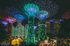 Christmas Wonderland (swordy84) Tags: landscape cityscape nightscape singapore gardensbythebay marinabay marinabaysands mbs supertrees lighting christmaswonderland christmas xmas