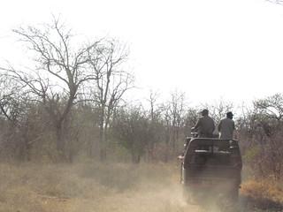Zimbabwe Cape Buffalo Hunt 35
