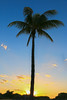Sunrise @ Miami Beach (Rick & Bart) Tags: miami miamibeach florida usa rickvink rickbart canon eos70d beach sunrise nature sky clouds tree palmtree southbeach