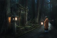 Japan (Korzhonov Daniil) Tags: typical alt