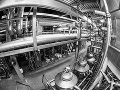 Brewhouse (vZwicky) Tags: brewery fisheye dailyinjanuary2018 monochrome blackandwhite beer hops