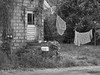 Hung Out to Dry (Bob G. Bell) Tags: clothesline building rundown house clothes sheets bw bobbell wv cassville westvirginia door highgrass mailbox weeds vines