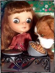 Blythe-a-Day#4. Scarf&#5. Sample/Simple: Adventures in Feeding Barkley