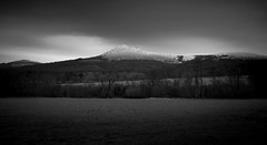 Bennachie (SawardPhotography) Tags: black white scotland aberdeen bennachie mountain rural country countryside highlands land landscape sky grass hill tree lamp benachie