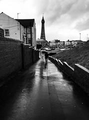 Blackpool yn y glaw / Blackpool in the rain (Rhisiart Hincks) Tags: dorre torre tour tŵr tower tùr башня věž კოშკი מגדל 塔 torony wieża chuntu turn tornet glaw glav euri rain pluie uisge báisteach lluvia pluvo eső regen дождь cyrchfangwyliau fylde holidayresort blackpool sirgaerhirfryn fyldecoast lancashire lloegr powsows england sasana brosaoz ingalaterra angleterre inghilterra anglaterra 英国 angletèrra sasainn انجلتــرا anglie ngilandi ue eu ewrop europe eòrpa europa