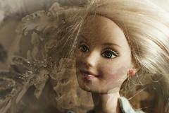 Barbie Dreams (ertolima) Tags: doubleexposure macromondays barbie doll